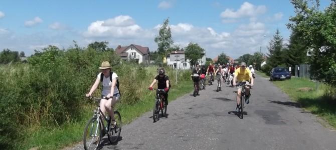 Puszcza Kampinoska – wiosenna rozgrzewka – 38 km – 7 maja
