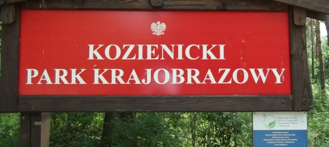 Zdjęcia z Kozienickiego Parku Krajobrazowego