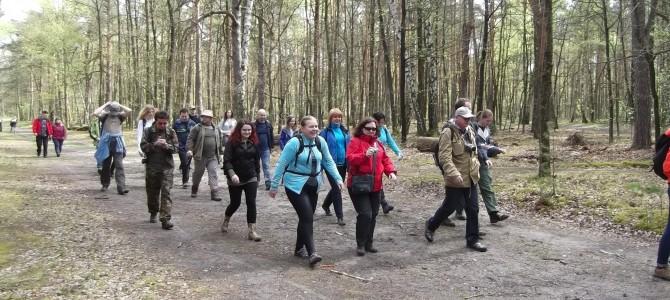Łazik na Kabatach, 11.5 lub 14 km, spacer dla wszystkich, sobota 10 grudnia