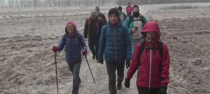 Zdjęcia z wyprawy pieszej w dniu 17 grudnia po Lesie Kabackim