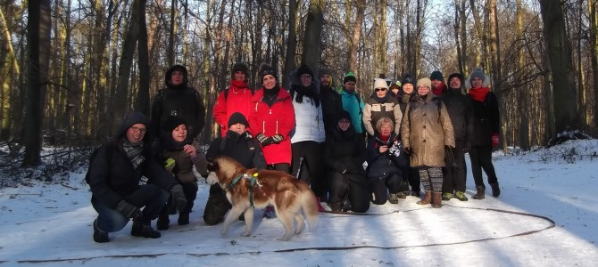 Spacer po Lesie Kabackim, 14 km, sobota 18 lutego