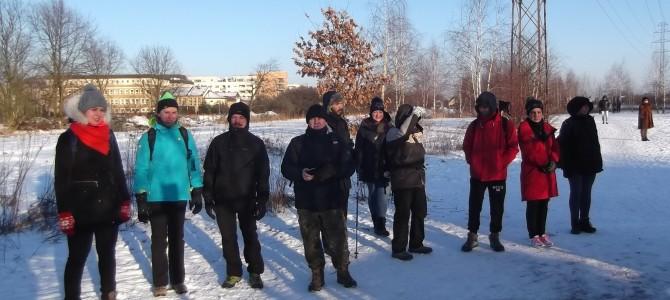 Zimowa Puszcza Kampinoska, sobota 21 stycznia