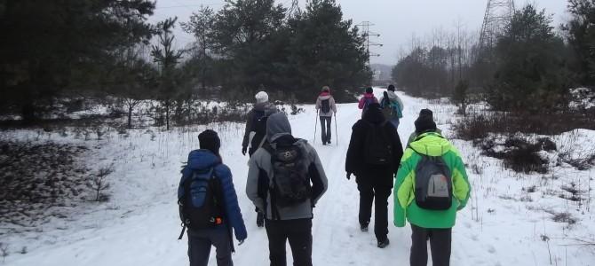 Wyprawa przez Lasy Chojnowskie, 15 lub 24 km, sobota 28 stycznia