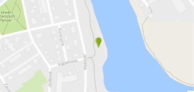 Morsowanie w Jeziorku Czerniakowskim, czwartek 9 marca