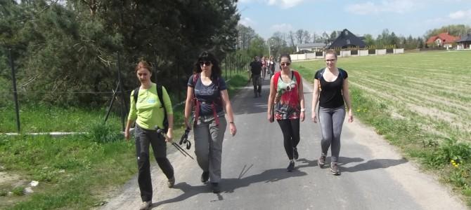 Spacer przez Lasy Chojnowskie, niedziela 21 maja