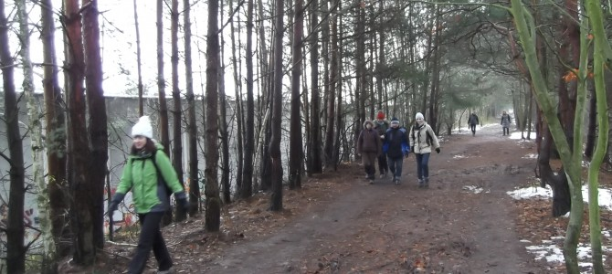 Zdjęcia z wyprawy pieszej po Lesie Kabackim w sobotę 2 grudnia
