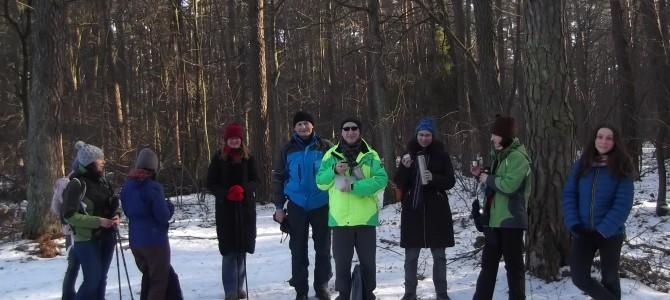 Lasy Chojnowskie, spacer 14 km, sobota 27 stycznia
