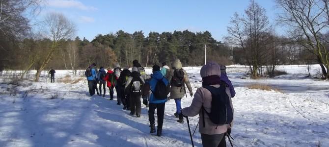Spacer przez piękny Las Młochowski, sobota 10 lutego