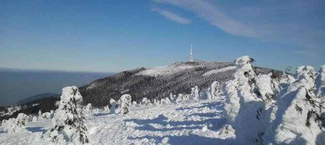 Zimowa wyprawa na Beskid Śląski