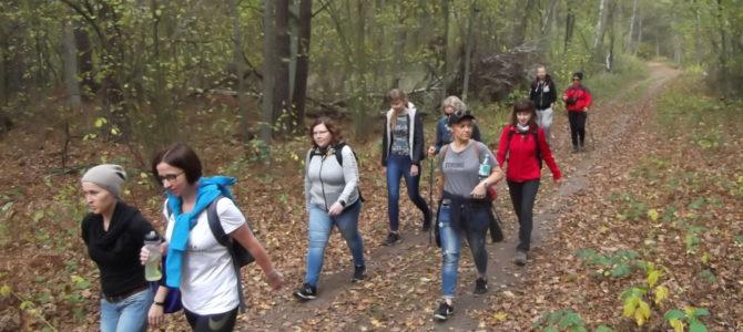Jesienna Puszcza Kampinoska, niedziela 27 października
