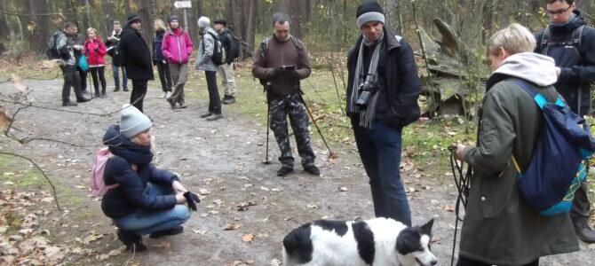 Puszcza Kampinoska – pierwszy jesienny spacer, niedziela 3 października