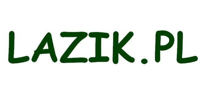 NOTA PRAWNA: nazwa domeny LAZIK.PL